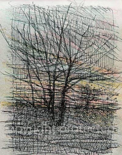 Roadside trees at dusk
